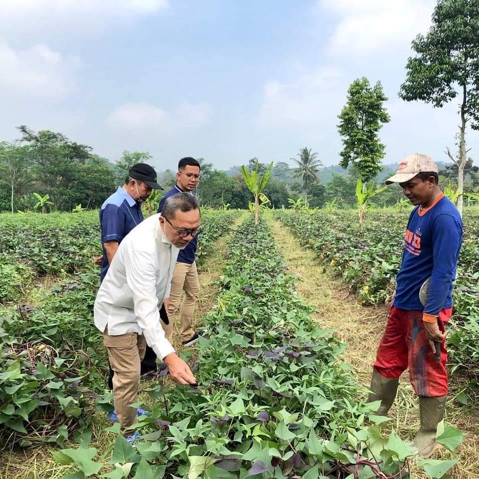 Ketum PAN Ingatkan Pentingnya Bertani Saat Pandemi