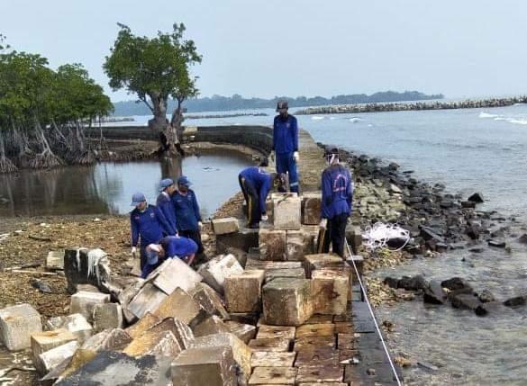 Kena Abrasi, Pasukan Biru Sigap Benahi Tanggul Pulau Untung Jawa