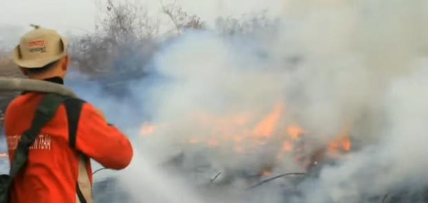 BMKG Deteksi 20 Titik Panas di Sumatera di Duga Kebakaran Hutan