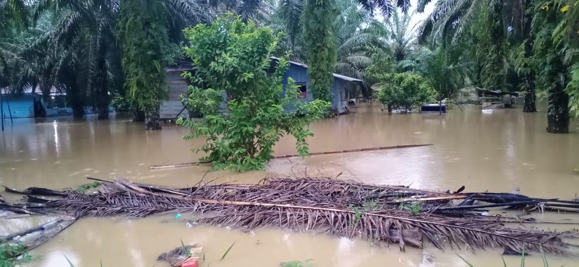 Puluhan Rumah di Aceh Singkil Terendam Banjir